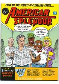 American Splendor #13