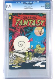 Graphic Fantasy #1